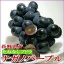 長野産 「種無し」 ナガノパープルぶどう2kg 4?6房前後入り 皮ごと食べられる葡萄、信州高原から