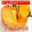 京都名産 代白柿(だいしろかき)12個入り甘さ抜群!お口でとろける果肉がとっても美味♪シャーベットにしても美味しいカキです