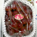 「種無し」 紫苑ぶどう(しえんぶどう) 700g 化粧箱 岡山産【高級ぶどう グレープ パープル】
