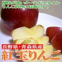 ょくりんご