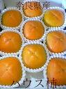 種無し ハウス柿(かき)3Lサイズ 9個入り 化粧箱 奈良産特有の風味を持つ甘い柿です。「種無しカキ 平核無し柿」