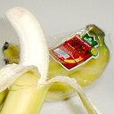 フィリピン産 甘熟王バナナ(かんじゅくおうばなな) 約6kg 9パック入り(4〜5房/1パッ
