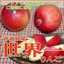 りんご 世界一リンゴ(せかいいちりんご)青森産 約5kg 産地箱(超大玉9〜10個入り)【ラッキーシール対応】