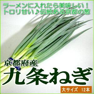 京都産 「京野菜」九条ネギ ...