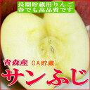 【送料無料】訳あり サンふじリンゴ「CA貯蔵」青森産5kg 小玉 23〜25個入りCAりん