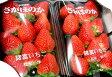 さがほのかイチゴ 2パック入り(11個前後入り300g/1パック) 佐賀産香り、甘み、艶やかな赤が特徴の苺です ※お届け日はご指定いただけません。「大玉 苺 いちご ストロベリー」
