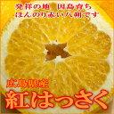 紅はっさく(べにはっさく)広島 因島産5kg 2Lサイズ(13個前後入り)甘味と苦味が絶妙で美味しい日本のかんきつです「いんのしま 八朔」