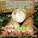 京都西山産 「朝掘り」 京 たけのこ 4kg(4〜10本前後...