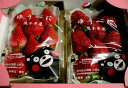 熊本産 ゆうべにイチゴ大玉 3Lサイズ 2パック入り箱 【ストロベリー 】