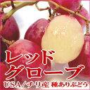 レッドグローブ葡萄(れっどぐろーぶぶどう) 約1kg チリ・アメリカ産 ワインカラーの大粒で、甘いブドウです 「種あり」