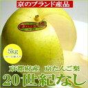 二十世紀梨(20世紀梨)(にじゅっせいきなし)約5kg 特大...