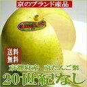 【お試し!送料無料】「京たんご梨」二十世紀梨(にじゅっせいきなし)訳あり 京都産5kg 16〜22個入り糖度11.5度以上!甘みに酸味が利いた爽やかな20世紀なしです ワケあり 梨 やや外観の落ちる訳ありです