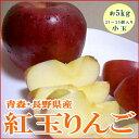 紅玉リンゴ(こうぎょくりんご)5kg 小玉23〜25個入り 青森・長野産●店長おすすめ果物です昔スタイルの甘酸っぱいリンゴです♪色が変わりにくいのでリンゴ料理にも適した林檎です 希少リンゴ