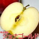 【送料無料】りんご ジョナゴールド 青森産5kg サイズはお任せです(16〜23個入り)「CA貯蔵りんご」甘みと酸味がバランスいいリンゴ ちょっとキズがあるなど「訳あり」です。【ラッキーシール対応】