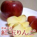 紅玉リンゴ(こうぎょくりんご)約5kg 中玉 18〜20個入り 青森・長野産 酸っぱいリンゴ|コウギョク べにたま 林檎 アップル パイ ジュース ジャム ケーキ