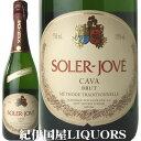 瓶内2次醗酵というシャンパーニュと同じ伝統的な製法で造られたスペイン産の高品質スパークリング・ワイン。