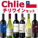 チリワイン 6本セット(赤ワイン ミディアムボディ4本+白ワイン 辛口2本)【送料無料S】【ミックス