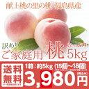 献上桃 訳あり ご家庭用5kg【送料無料】5kg (15〜2...