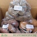 2020年収穫【新じゃが】北海道帯広産じゃがいも3種セット【各1kg合計3kg】野菜/じゃがいも/馬鈴薯/インカのめざめ/ノーザンルビー/シャドークイーン/贈答/北海道の贈り物