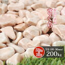 【送料無料】さくら 5分 200kg (20kg×10袋) ...