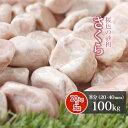 【送料無料】さくら 8分 100kg (20kg×5袋) | 約20-40mm 庭 砂利 石 玉砂利 敷き砂利 化粧砂利 ピンク 桃色 桜色 ガーデニング