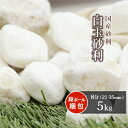 送料無料白玉砂利8分5kg|約2135mm砂利石庭玉砂利玉石