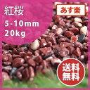 玉砂利:紅桜 20kg【送料無料】【あす楽】