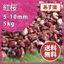 砂利:紅桜 5kg【送料無料】【あす楽】