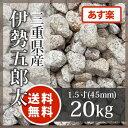 ゴロタ石:伊勢五郎太 1.5寸 三重県産20kg【送料無料】【あす楽】