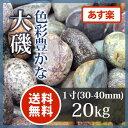 玉砂利 アジアン 和風 庭園大磯 1寸(20kg【送料無料】【あす楽】