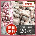 枯山水 砂利:桜みかげ3分(3-12mm)20kgピンク 化粧砂利 庭【送料無料】【あす楽】化粧砂利
