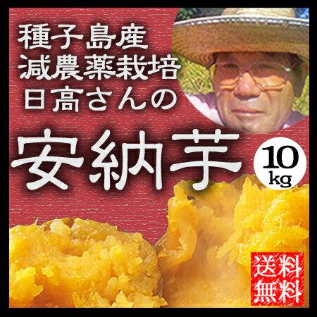 安納芋 10kg 種子島 送料無料 減農薬 蜜芋 安納いも 鹿児島産 サツマイモ ギフト 日高農園