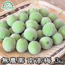 梅 南高梅 無農薬 3kg 熟梅 黄色梅 送料無料 梅酒 梅干し 梅酢 梅シロップ 酵素ジュー