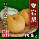 【送料無料】愛宕梨 (あたご梨) 3kg 贈り物にぴったり【内祝い】【快気祝】【御見舞】【御供】【ギフト】三重産|梨|進物用|大きい梨|果物|フルーツ|通販|