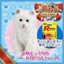 【単2アルカリ乾電池6本付き】日本総販売元 セガトイズ 夢ねこプレミアム 子供からお年寄りまで皆に愛される 夢猫 シリーズ!