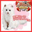 【プレゼン包装承ります♪】日本総販売元 セガトイズ 夢ねこプレミアム 子供からお年寄りまで皆に愛される 夢猫 シリーズ!