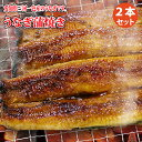 うなぎ蒲焼き 2本セット|鰻、愛知県産ウナギかば焼き