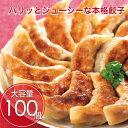 餃子 100個 ポイント消化 お試し 冷凍食品 訳あり お