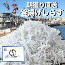 \朝獲れ!漁港より直送/釜揚げしらす 1kg 岸和田漁港水揚...