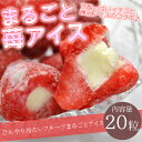 送料無料 まるごと苺アイス 20粒 ※練乳いちごアイス、アイス、イチゴ、あいす【RCP