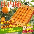 訳あり 庄内柿 約5kg(30〜37玉前後)※訳あり、柿、かき、カキ、種なし柿、産直、山形産