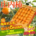 訳あり 庄内柿 約5kg(30〜37玉前後)※訳あり、柿、か...