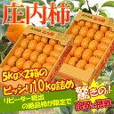 訳あり 庄内柿 約10kg(5kg×2箱)※訳あり、柿、かき...
