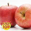 送料無料 葉とらず シナノスイート【贈答用】約10kg(約28〜40個) ※青森産、直送、りんご、リンゴ、林檎