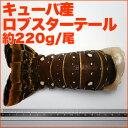 キューバ産スパイニーロブスターテール一尾 約220g (8オンス)