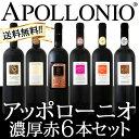 【送料無料】大人気イタリアン【アッポローニオ】濃厚赤6本セット