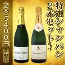 【送料無料】第22弾!豪華絢爛!ご愛顧に大感謝!!数量限定!特選シャンパン2本セット!