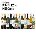 【送料無料】第77弾!超特大感謝!≪スタッフ厳選≫の激得白ワイン12本9,980円(税別)セット!