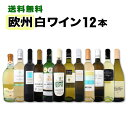 【送料無料】第80弾!超特大感謝!≪スタッフ厳選≫の激得白ワインセット 12本!