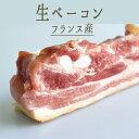 生ベーコン (パンチェッタ) ベーコン <フランス産> 【約350-450g】【\400/100